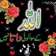 Hafiz Muhammad Ans